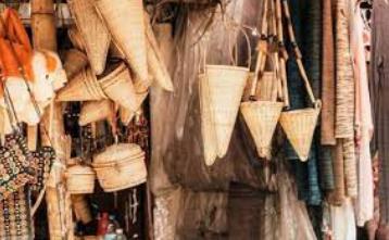 Cane and Bamboo of Jammu