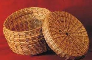 Cane, Bamboo, Grass, Fibre of Delhi