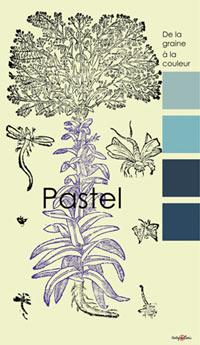 Natural Indigo/Pastel