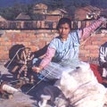 Cotton Weaving of Nepal