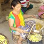 Weaving of Laos