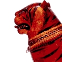 Dolls and Toys of Rajasthan