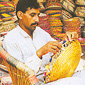 Cane, Bamboo, Reed and Fibre of Pakistan