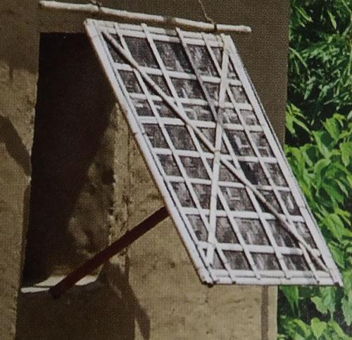 Bamboo Fences of Tripura