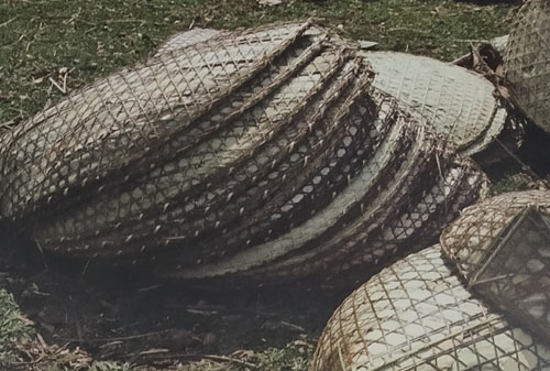 Bamboo Rain Shields of Meghalaya